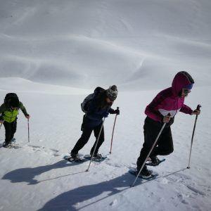 Un grupo de personas asciende con raquetas por la nieve