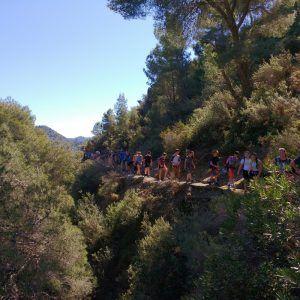 Un grupo de niños realizando senderismo